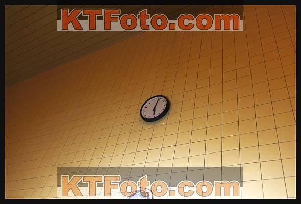 obrázek 1750065