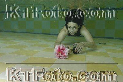 Foto 2335119