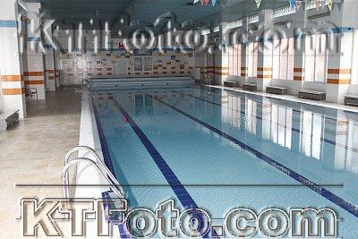 photo 2303178