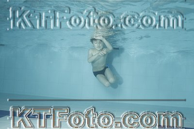 photo 2303463