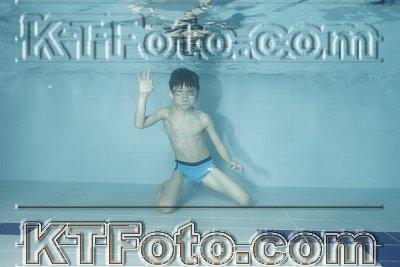 photo 2303464