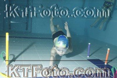photo 2303518