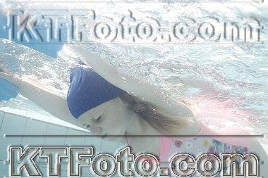 obrázek 2915886