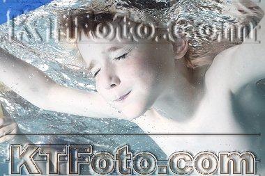 obrázek 2921152