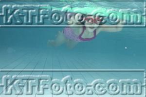 Foto 3212383