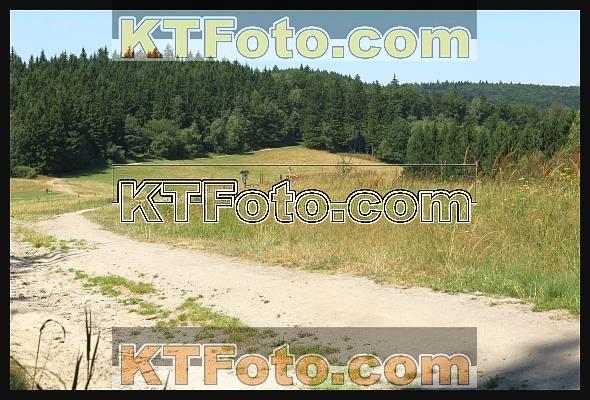 Foto 1884641