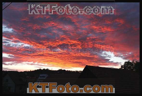 Foto 1193181