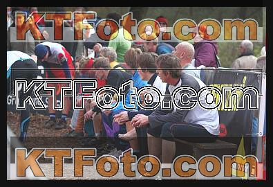 obrázek 1301797