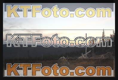 Foto 1301863