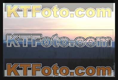Foto 1301864