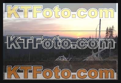 Foto 1301866