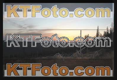 Foto 1301871
