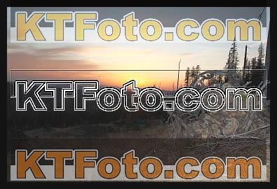 Foto 1301874