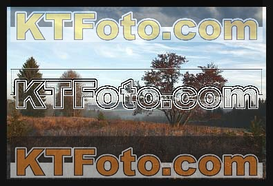 Foto 1301880