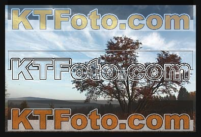 Foto 1301884