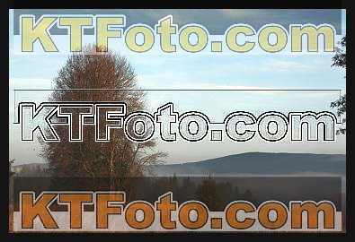 Foto 1301885