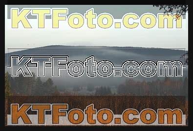 Foto 1301886