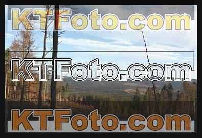 Foto 1301900