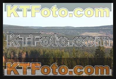 Foto 1301901