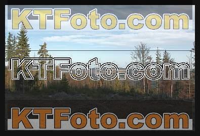 Foto 1301906