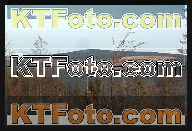 Foto 1301907